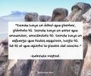 #citadelasemana