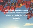 otoño_autumn